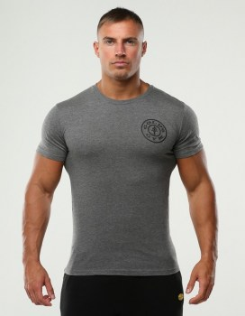 Golds Gym Chest Logo T-Shirt, Grey